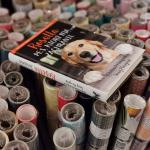 Pes, ktorý ma zachránil: O silnom pute, ktoré prekonalo aj ohrozenie života