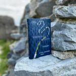 RECENZIA: Stina Jackson – Strieborná cesta
