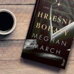 Román Hriešne bohatý od Meghan March: Zvodný a návykový príbeh plný vášne a nečakaných zvratov