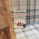 Kniha Dvojčatá z Osvienčimu ponúka dojímavý príbeh o dvojčatách, ktoré prežili Mengeleho experimenty